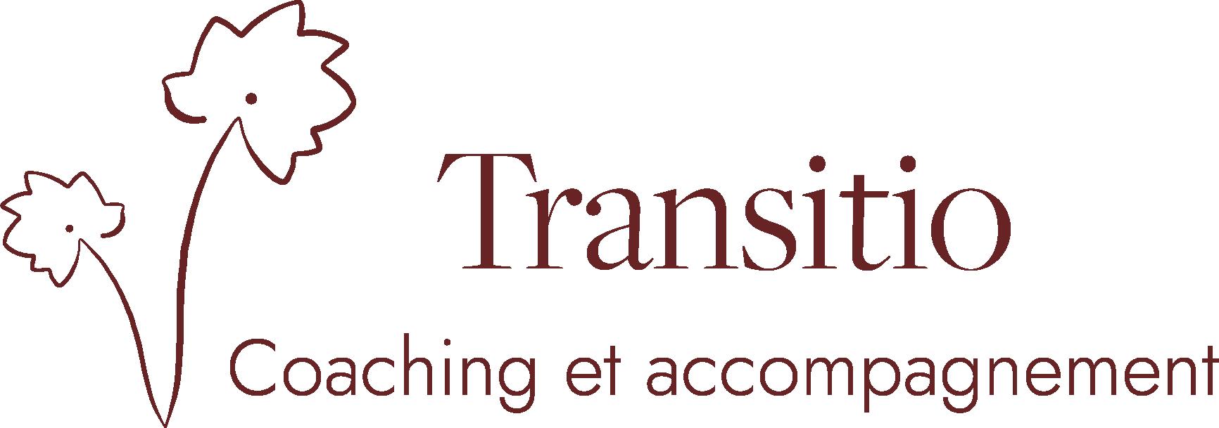 Coaching - Accompagnement au changement - Organisation  :  Transitio